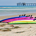 Rainbow Boards by Joseph S Giacalone