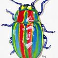 Rainbow Bug by Terri Kelleher