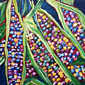 Rainbow Corn by Beth Lighthouse