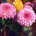Rainbow Dahlias by Julianne  Ososke