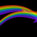 Rainbow Dolphin by Charles Stuart