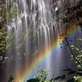Rainbow Falls by Marty Koch