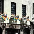 Rainbow History by Dan Stone
