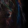 Rainbow Horse Eye by Larah McElroy