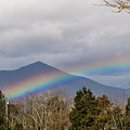 Rainbow In Front Of Sharp Top by Sherri Quick