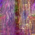 Rainbow In The Dark by Linda Sannuti
