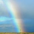 Rainbow In The Fields by Pamela Walton