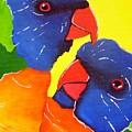 Rainbow Lorikeets  by Una  Miller
