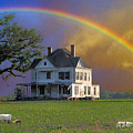 Rainbow Meadow by Jan Amiss Photography