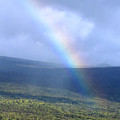 Rainbow by Nicole I Hamilton