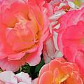 Rainbow Of Roses by Regina Geoghan