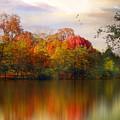 Rainbow River by Jessica Jenney