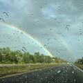 Rainbow Road by David Hart