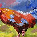 Rainbow Rooster by Joe Byrd