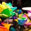 Rainbow Roses by Marcin Rogozinski