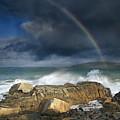 Rainbow To Heaven Shamrock Shores  by Betsy Knapp