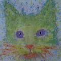 Rainbow Tomcat by Crina Iancau