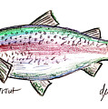 Rainbow Trout  by Deborah Willard