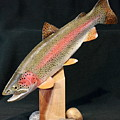 Rainbow Trout On Maple 15 by Eric Knowlton