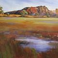 Rainbow Valley  Australia by Chris Hobel
