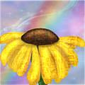 Rainbowsunflower by Julie Atkins