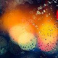 Raindrops by Dorothy Binder