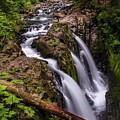 Rainforest Falls  by Harriet Feagin