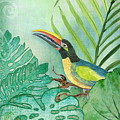 Rainforest Tropical - Tropical Toucan W Philodendron Elephant Ear And Palm Leaves by Audrey Jeanne Roberts