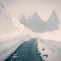Rainier Haunting by Ursa Davis