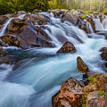 Rainier Runoff by Darren White