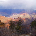 Raining In The Canyon by Marna Edwards Flavell