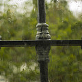 Rainy Afternoon by Georgina Chapa