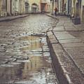 Rainy Day by Alex Polo