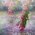 Rainy Day by Inho Kang