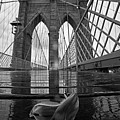 Rainy Day On The Brooklyn Bridge Brooklyn New York Tulip Petals Black And White by Toby McGuire