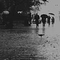 Rainy Day by Zina Zinchik