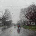 Rainy Fall Day by Christine Clark