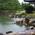 Rainy Japanese Garden Pond by Carol Groenen