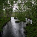 Rainy River. Koirajoki by Jouko Lehto
