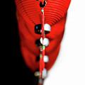 Raise The Red Lantern by Evelina Kremsdorf