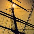 Raise The Sails by Lauri Novak