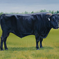 Ralphs Bull by Stacey Neumiller
