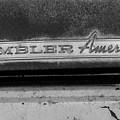Rambler American by Audrey Venute