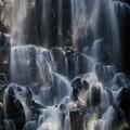 Ramona Falls 3 by Patricia Babbitt