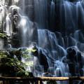 Ramona Falls 4 by Patricia Babbitt