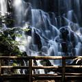 Ramona Falls by Patricia Babbitt