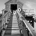 Ramp And Shed, Rockport Harbor, Maine #80490-bw by John Bald