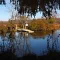Ramshorn Dock In Autumn by Larry Federman