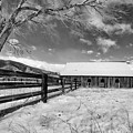 Ranch In Winter by Dianne Phelps