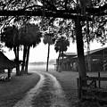 Ranch Life Bw by Lisa Renee Ludlum